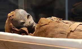 Analisado pela primeira vez ADN de antigas múmias egípcias, notícia DN